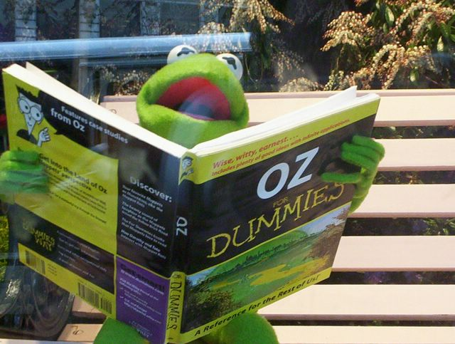Kermit with a favorite book